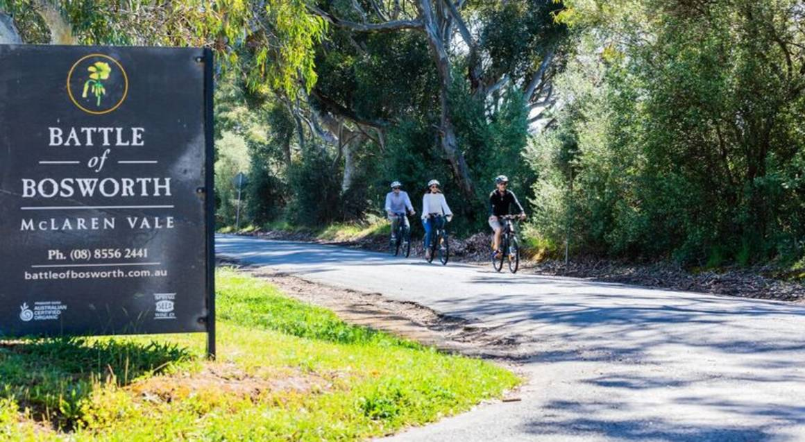 Electric Bike Winery Tour with Tastings and Lunch