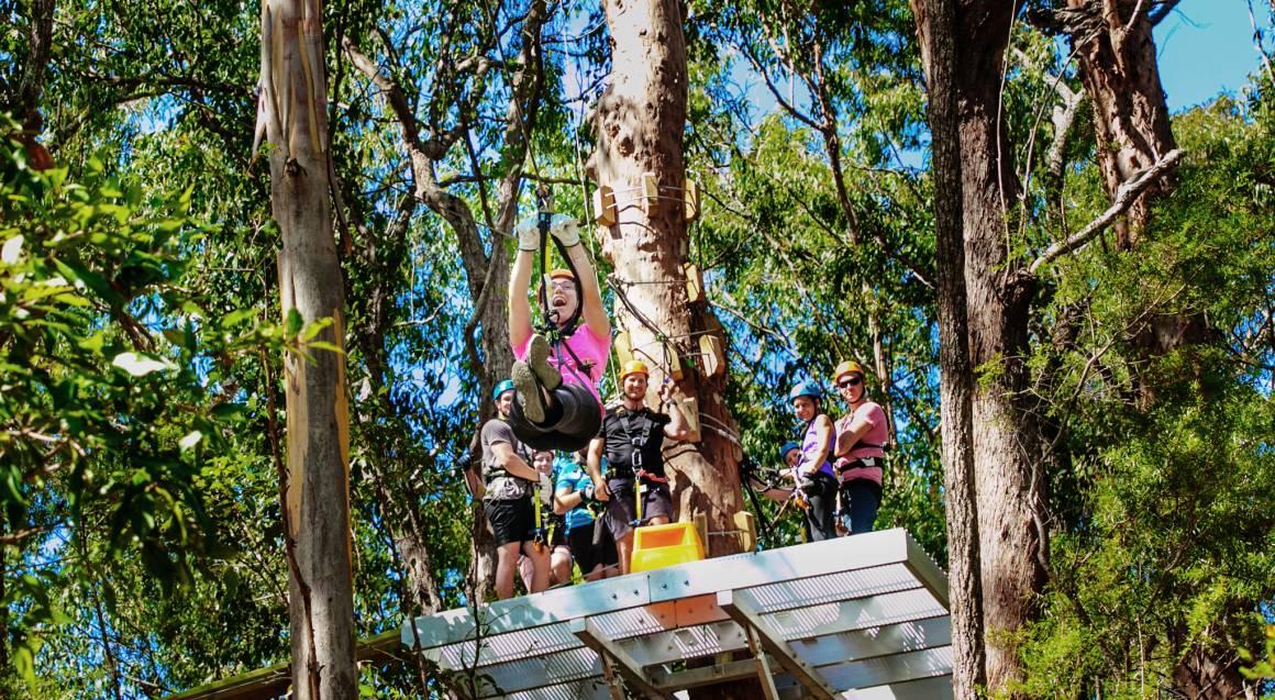 Extreme Zipline Guided Tour - Tamborine