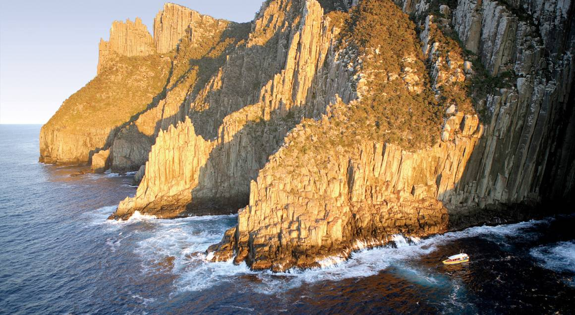 Tasman Island Nature Cruise - 3 Hours - Family