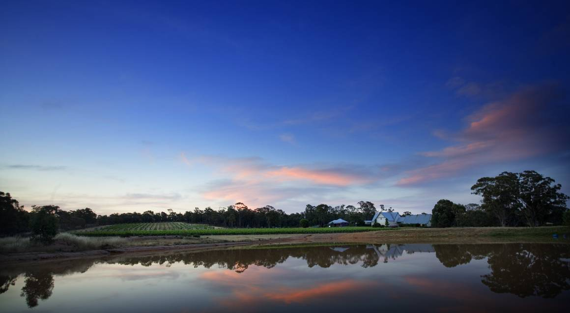 view over a lake at sunset in the yarra valley