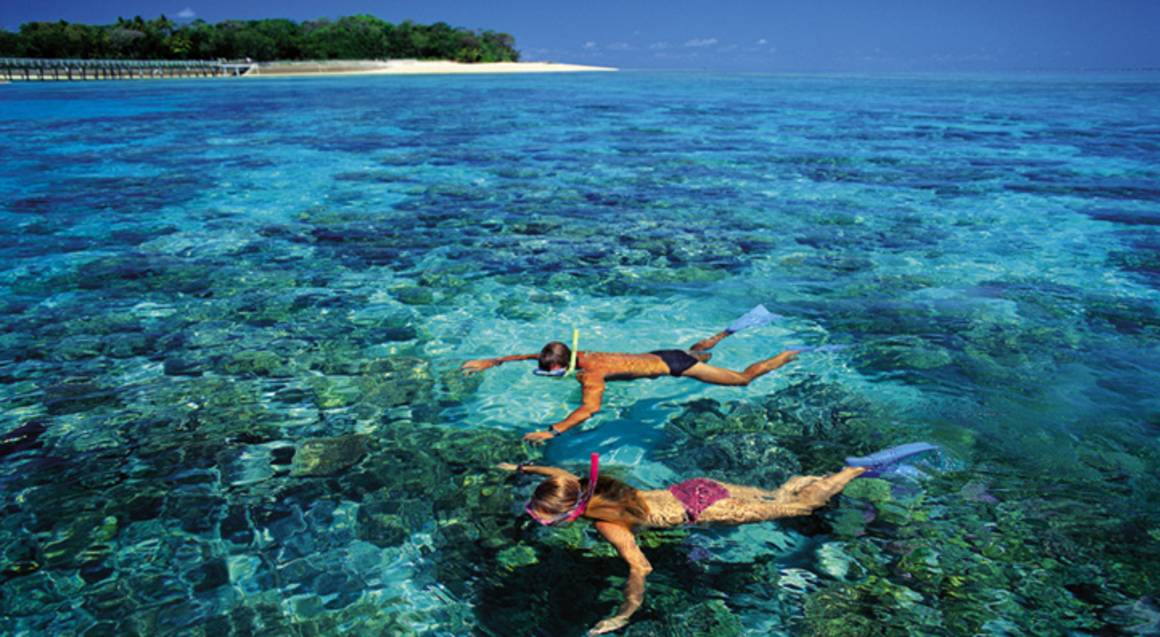 Reef Cruise and Full Day on Green Island - Family