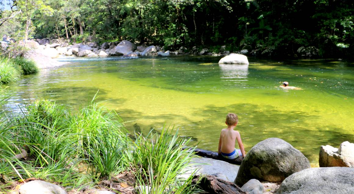 Mossman Gorge Rainforest Walk - 3.5 Hours