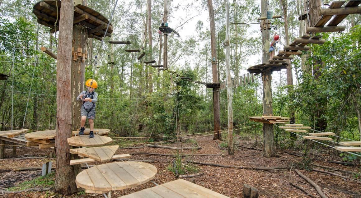 Children's Treetop Adventure Course - Ages 3-9