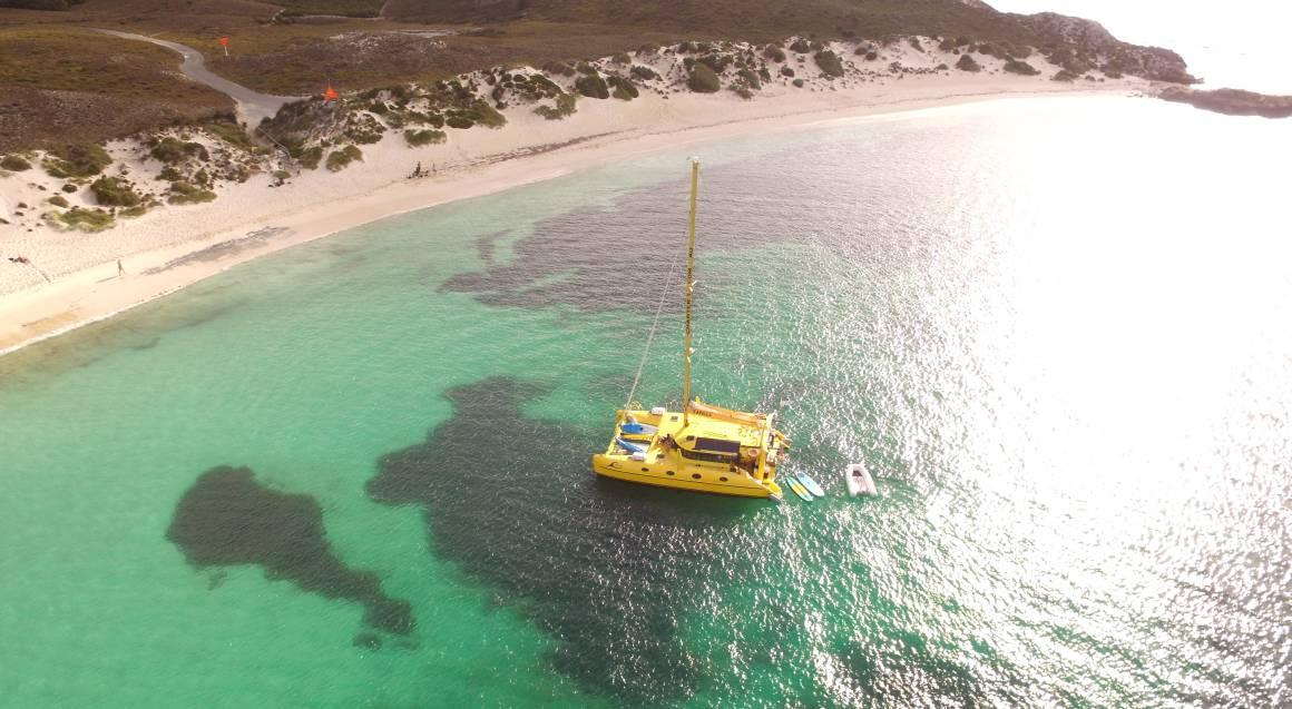 Sailing Catamaran to Rottnest Island - 1 Day