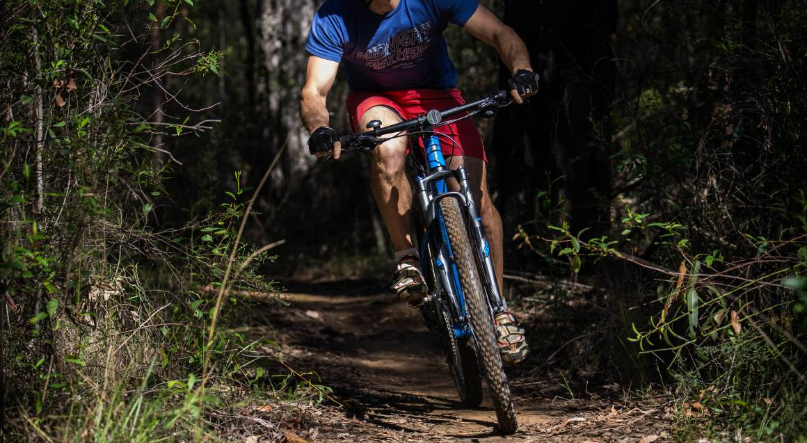 mountain bike tour solo male mountain bike rider crouching low while riding on a trail between trees