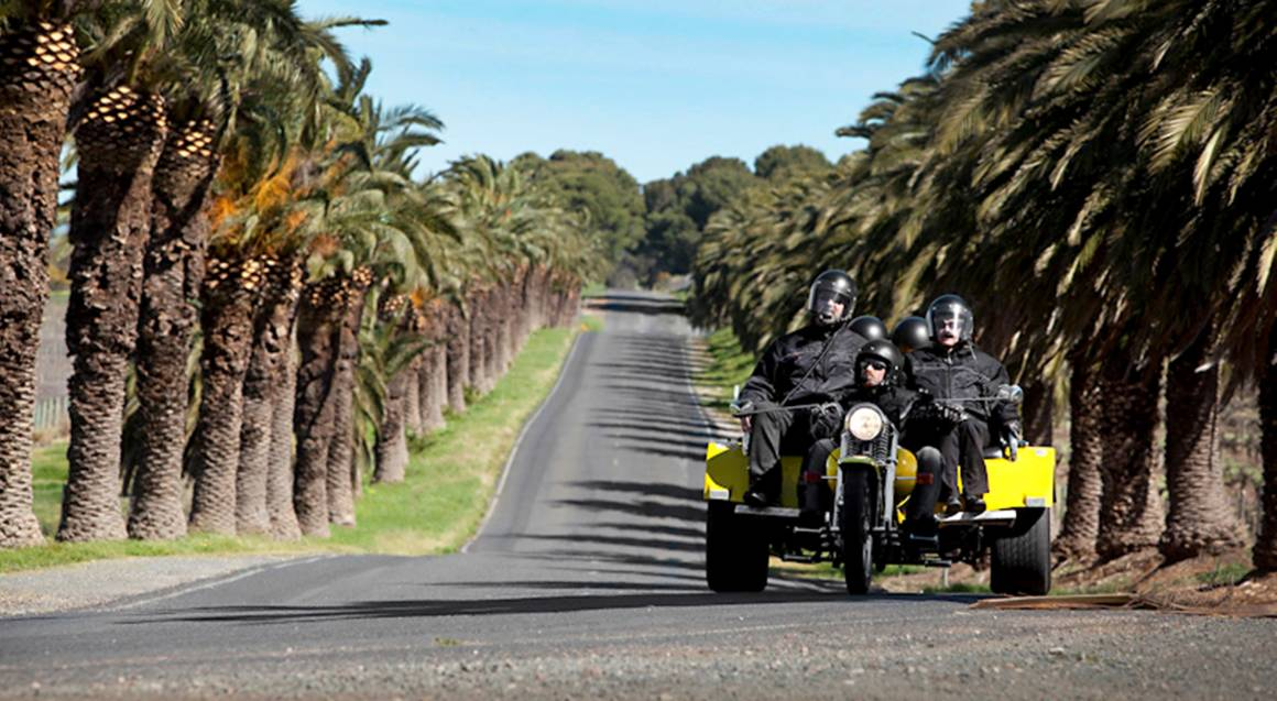 trike driving along road lined with palm trees in barossa valley
