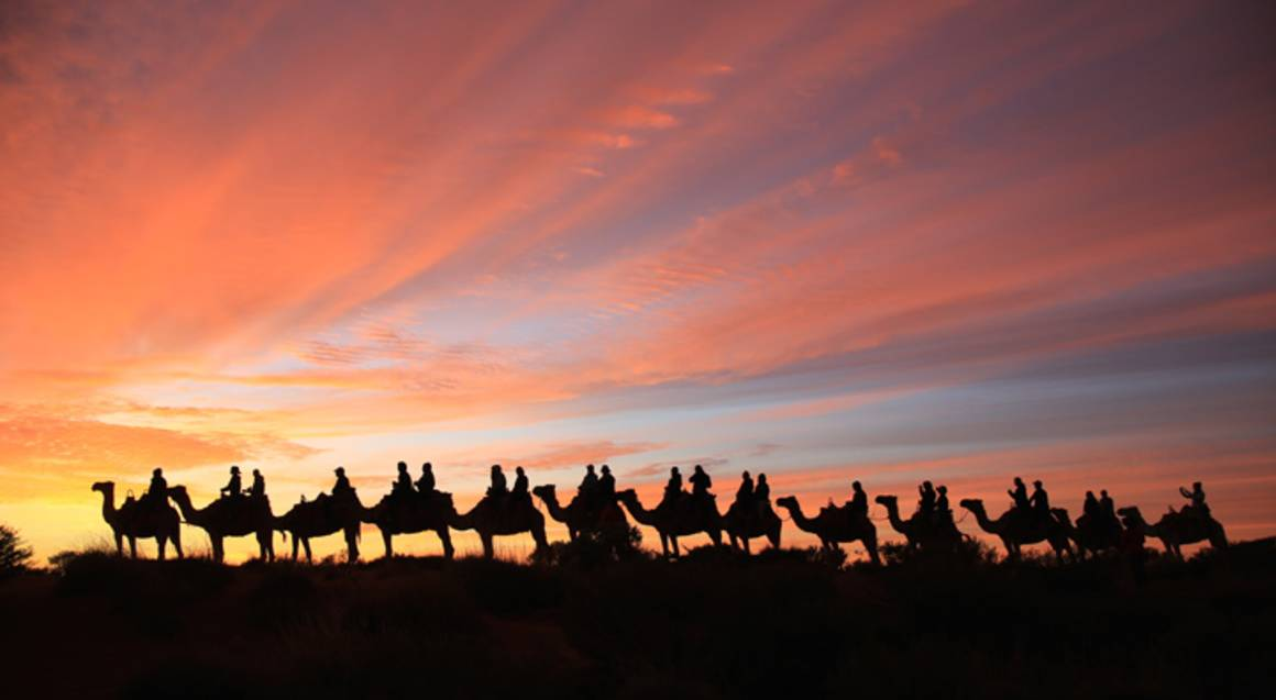 Sunrise Camel Ride - 60 Minutes
