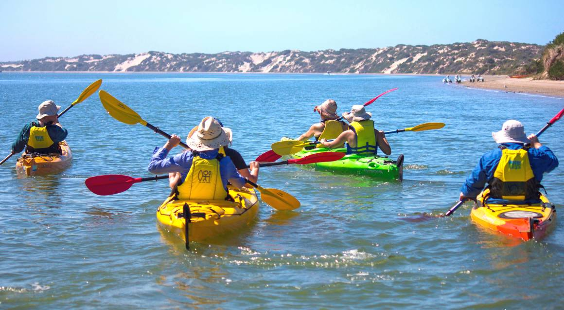 group of kayakers out paddling in the water with blue skies