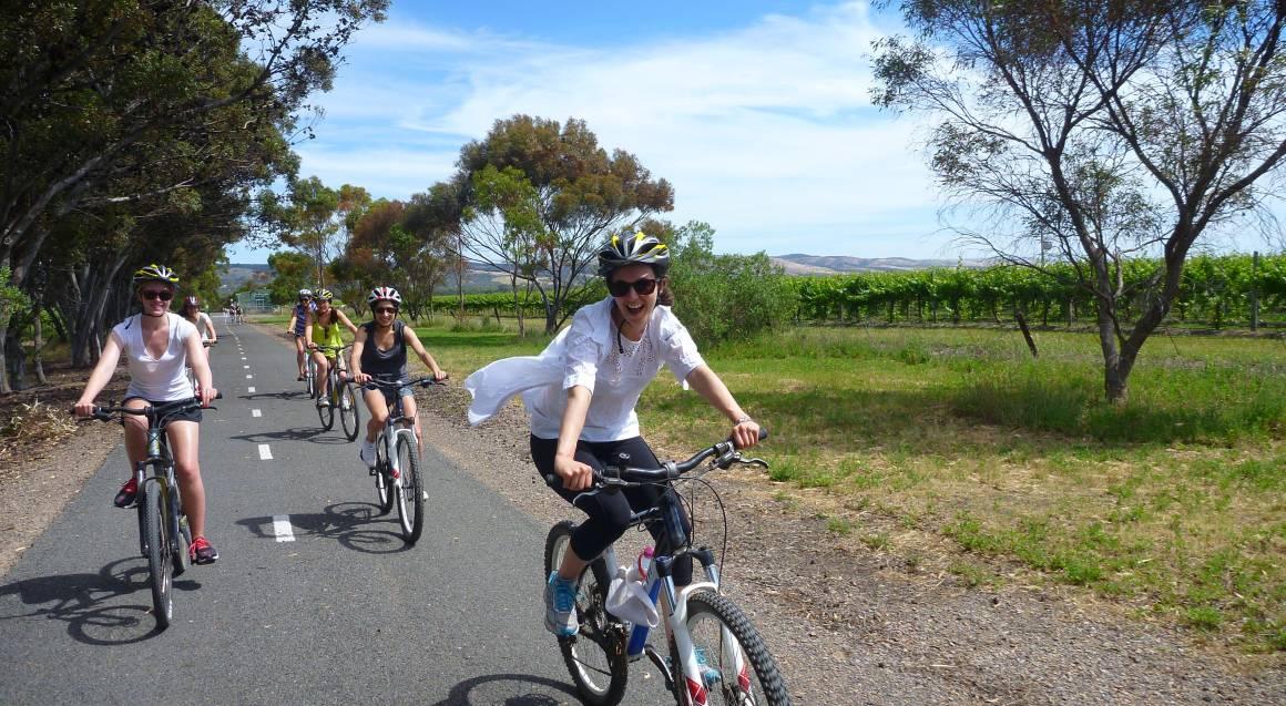 Full Day Bike Tour of McLaren Vale Wineries
