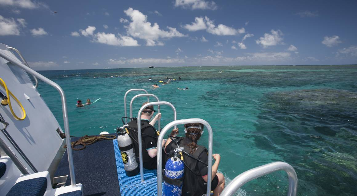 Scuba Diving Great Barrier Reef - Uncertified - Inc Levy Fee