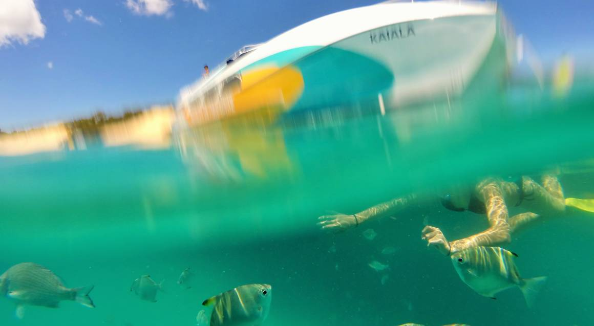 woman swimming in water with tropical fish under boat