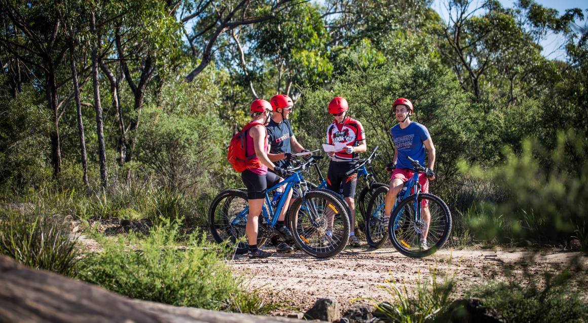 Mountain bike tour four riders stopped with their mountain bikes in bushland consulting a map