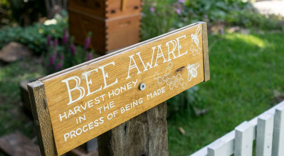 bee aware sign