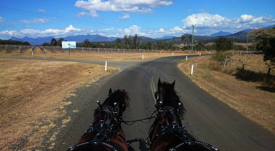 Horse-Drawn Carriage Winery and Brewery Tour with Lunch