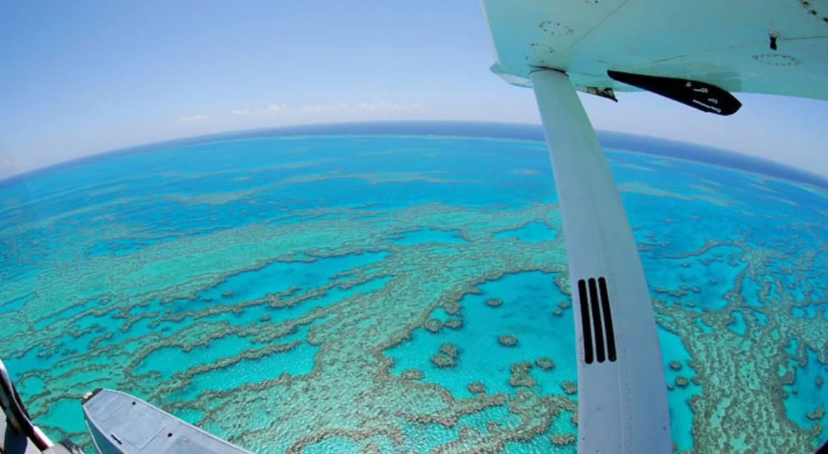 Seaplane Flight, Snorkel the Reef and Visit Whitehaven Beach