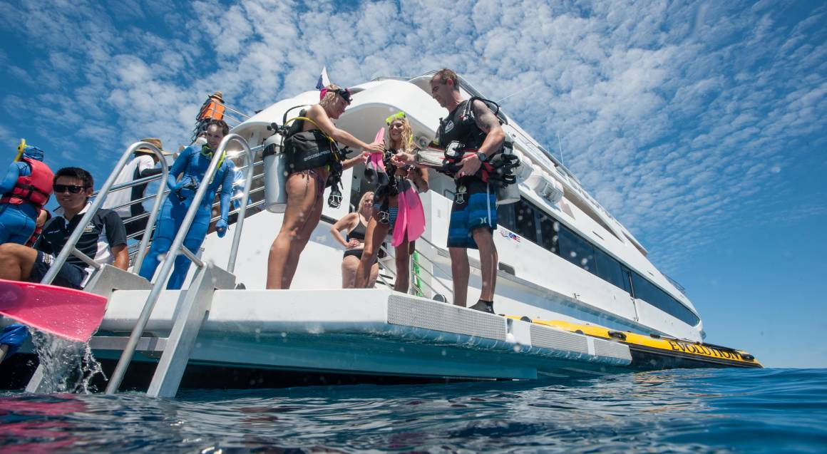 Great Barrier Reef Cruise, Snorkelling and Dive - Full Day