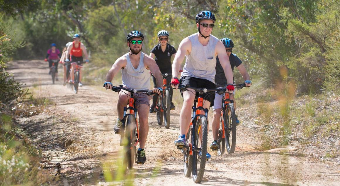 Mountain to Surf Guided Bike Tour - 2.5 Hours