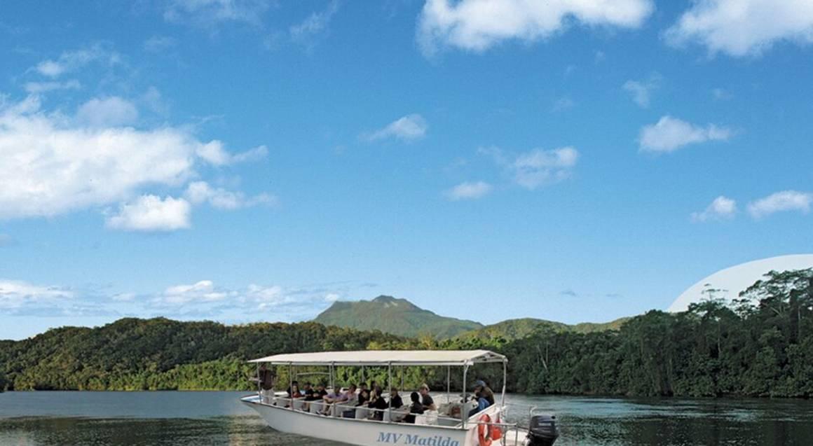 Daintree Rainforest, Cape Tribulation & 4WD Tour - Family