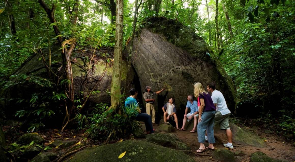Cape Tribulation, Daintree and Mossman Gorge Guided Tour