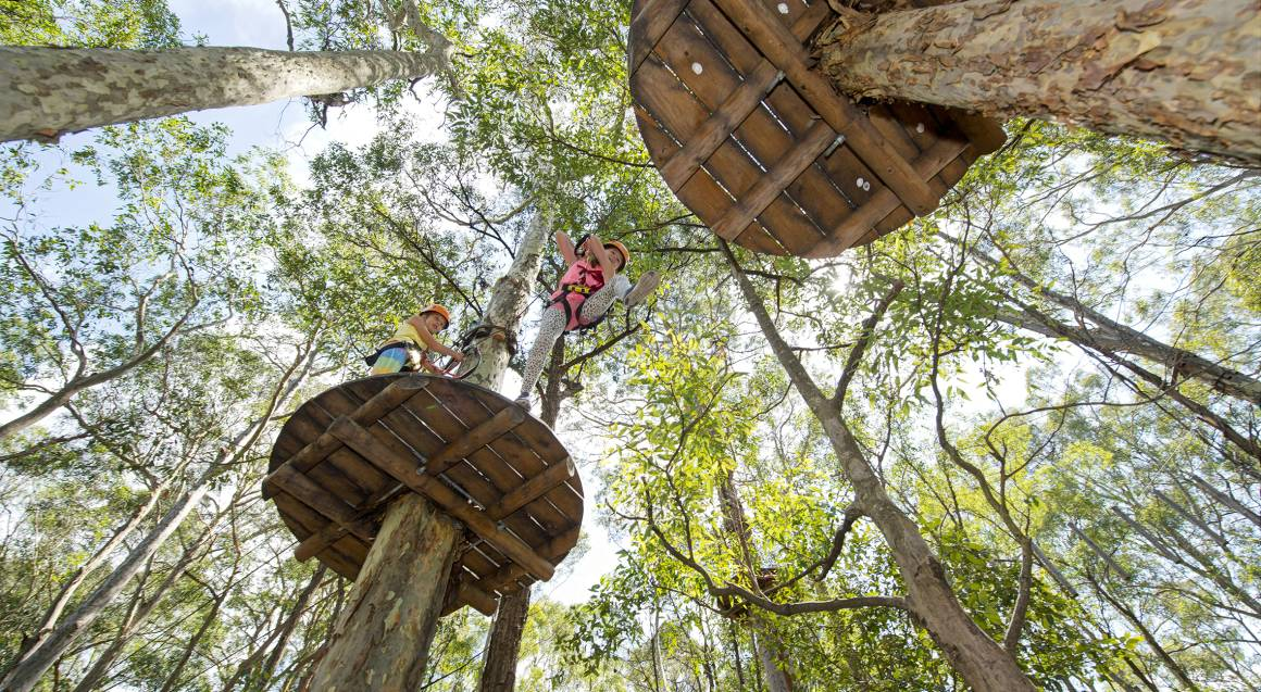 High Ropes Climbing Course with Flying Foxes - Newcastle