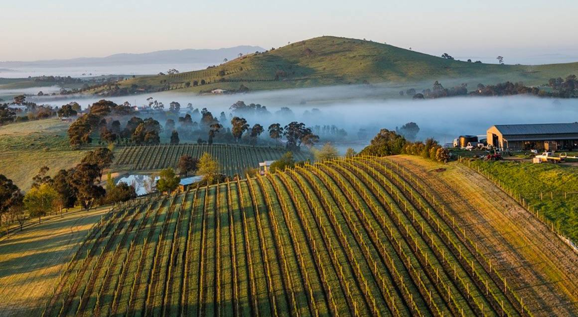 aerial view of yarra valley victoria
