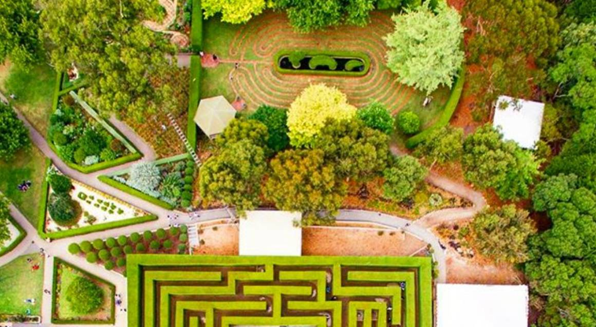 kids park overhead shot of hedge mazes and gardens
