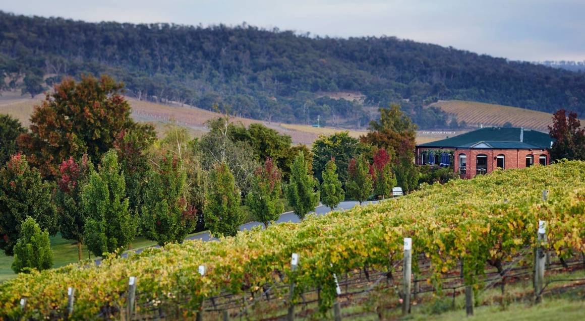 Private Winery Tour with Tastings and 3 Course Lunch - For 2