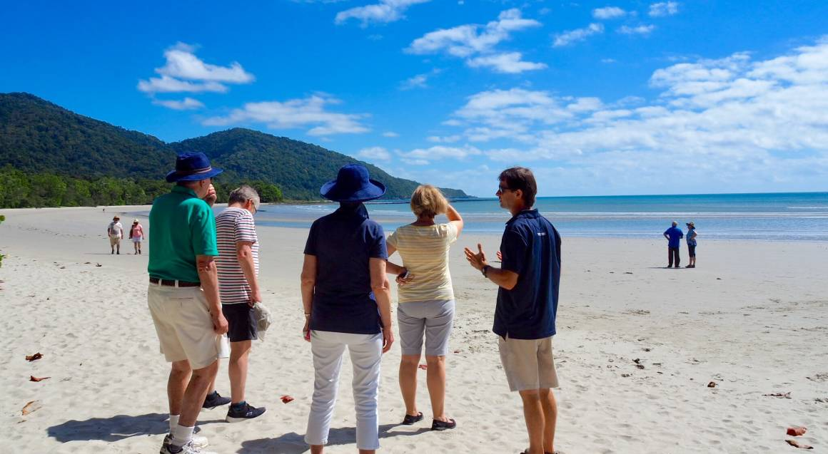 Daintree Rainforest Tour with River Cruise, Lunch and More