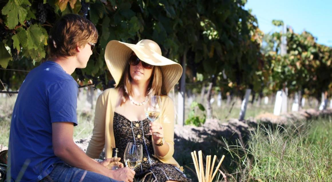Wine Tasting and Picnic in the Vines with Gift - For 2