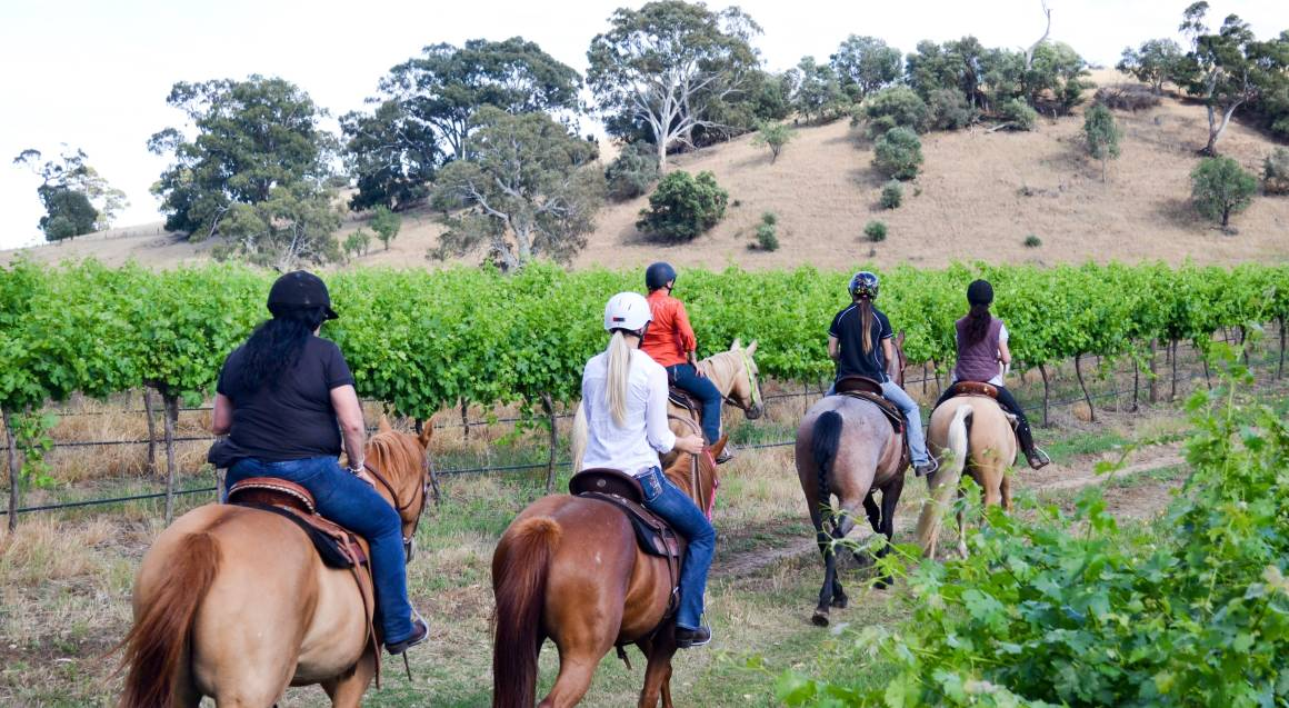 Barossa Valley Horse Riding Tour with Cheese Plate - For 2
