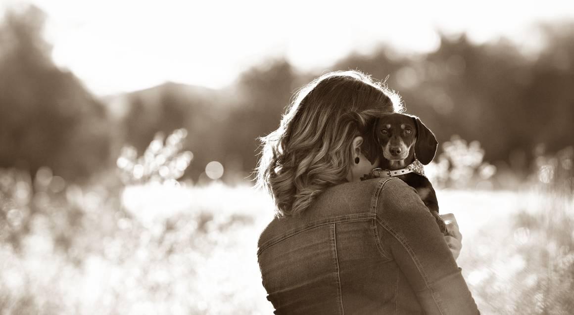 Pet Photo Shoot