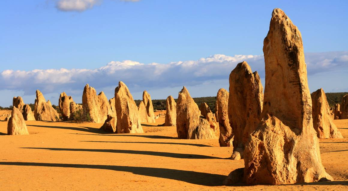 The Pinnacles and Swan Valley Tour with Lunch