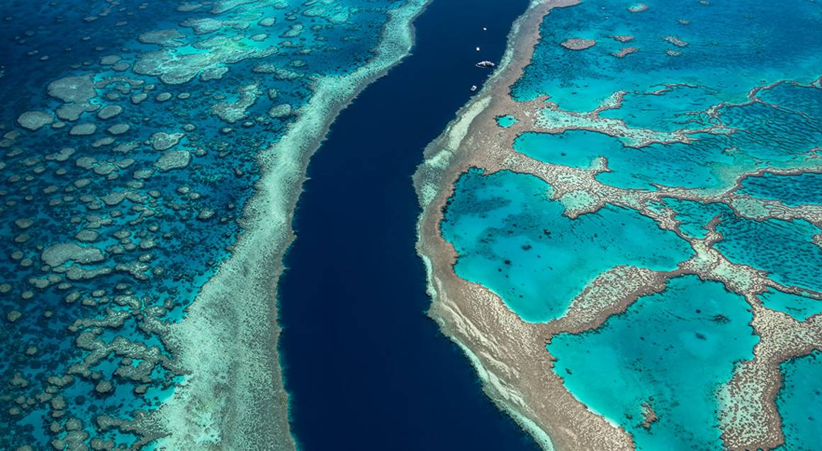 Great Barrier Reef and Whitsunday Scenic Flight - 60 Minutes