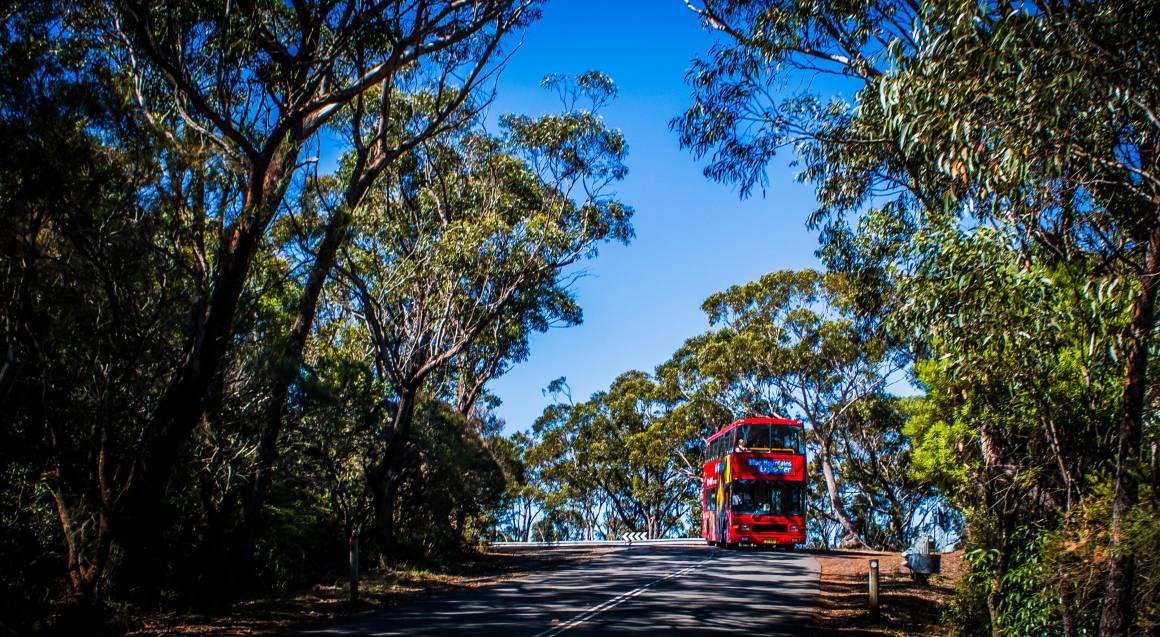 Blue Mountains Explorer Hop On Hop Off Bus Pass