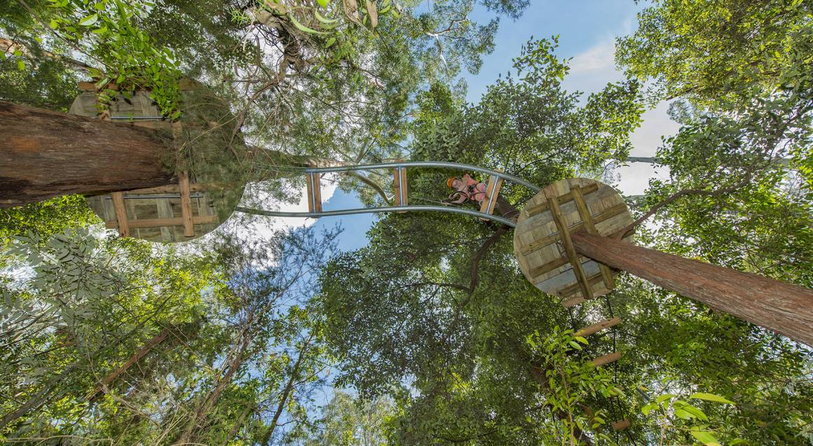 High Ropes Climbing Course with Flying Foxes - Central Coast