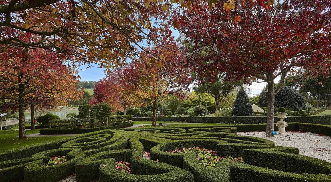 outdoor hedge maze with trees in the background