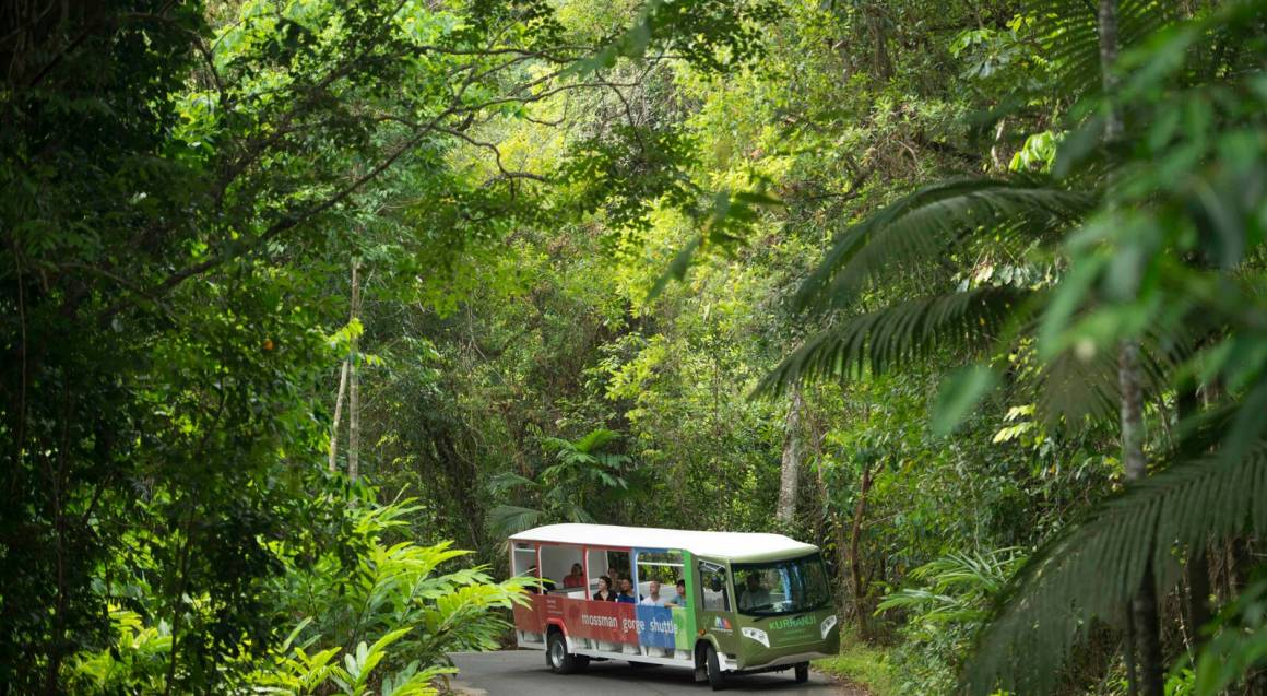 Daintree Aboriginal Culture Experience with Lunch