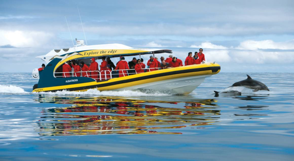 Bruny Island Wilderness Cruise - 3 Hours