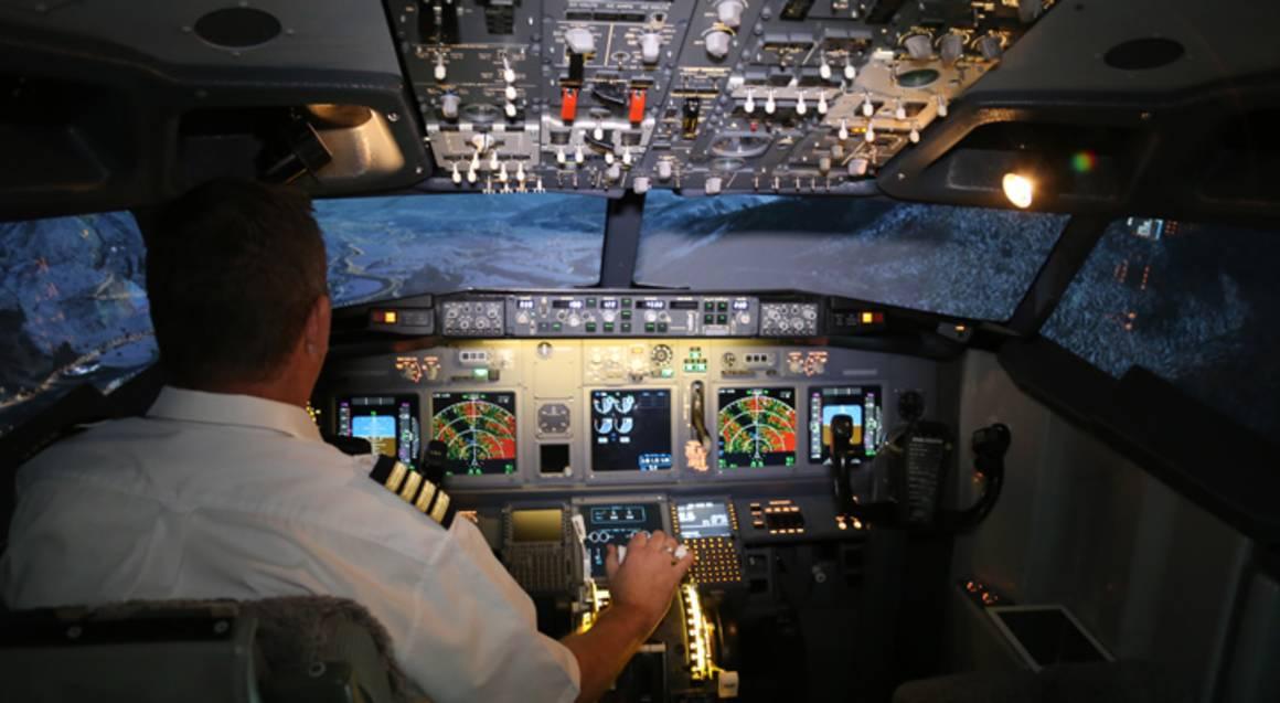 737 Jet Flight Simulator Experience - 30 Minutes