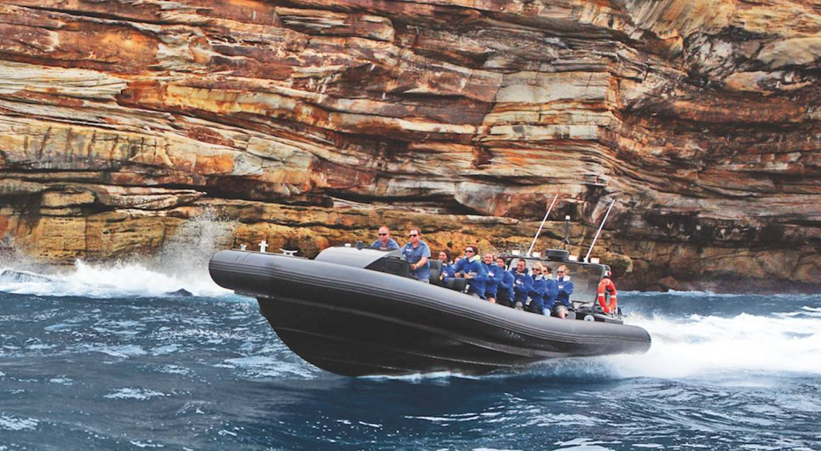 Offshore Thrill Ride to Bondi Beach and Return - 60 Minutes