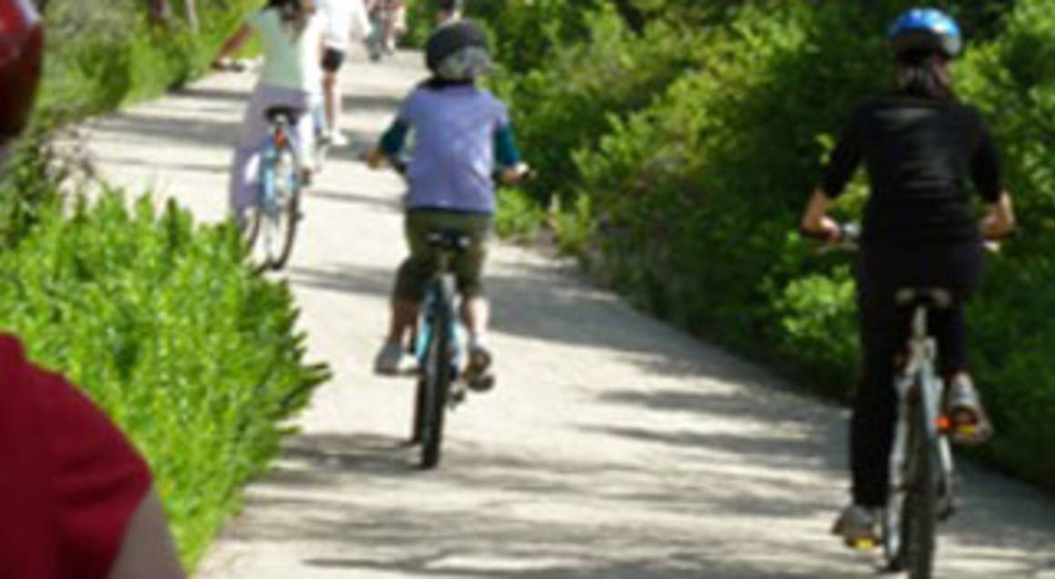 Self Guided Bicycle Hire and Peninsula Hot Springs
