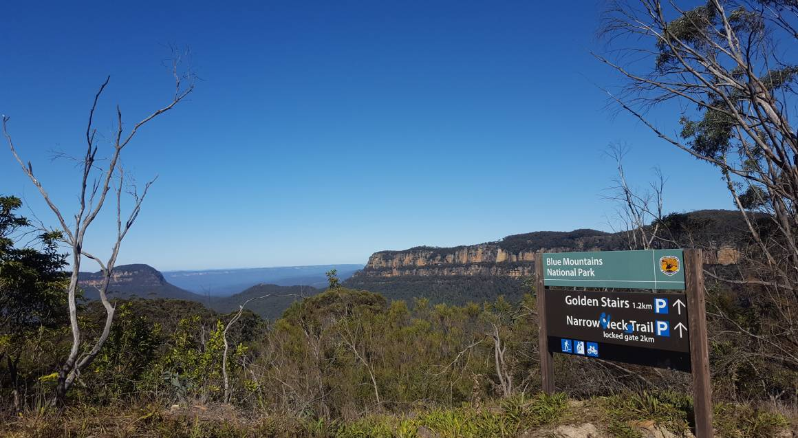 Mountain bike tour view of mountains and bushland with a sign that reads blue mountains national park