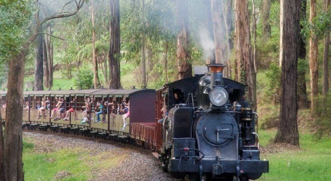 Healesville Sanctuary and Puffing Billy Steam Train Tour