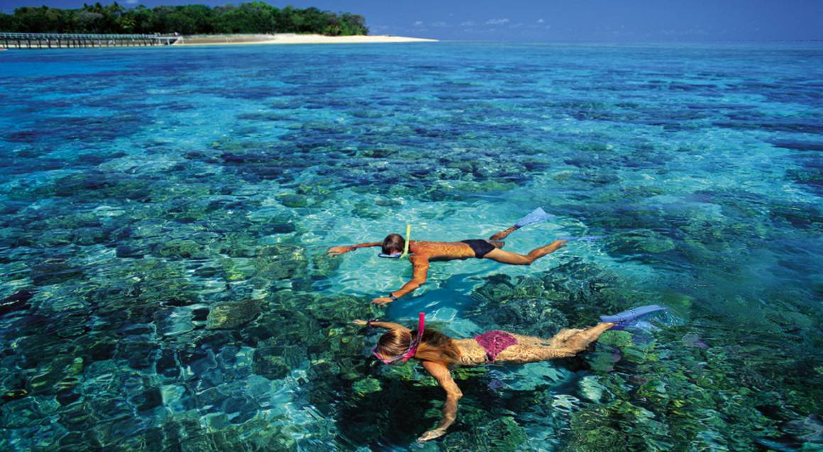 Reef Cruise and Full Day on Green Island - Adult