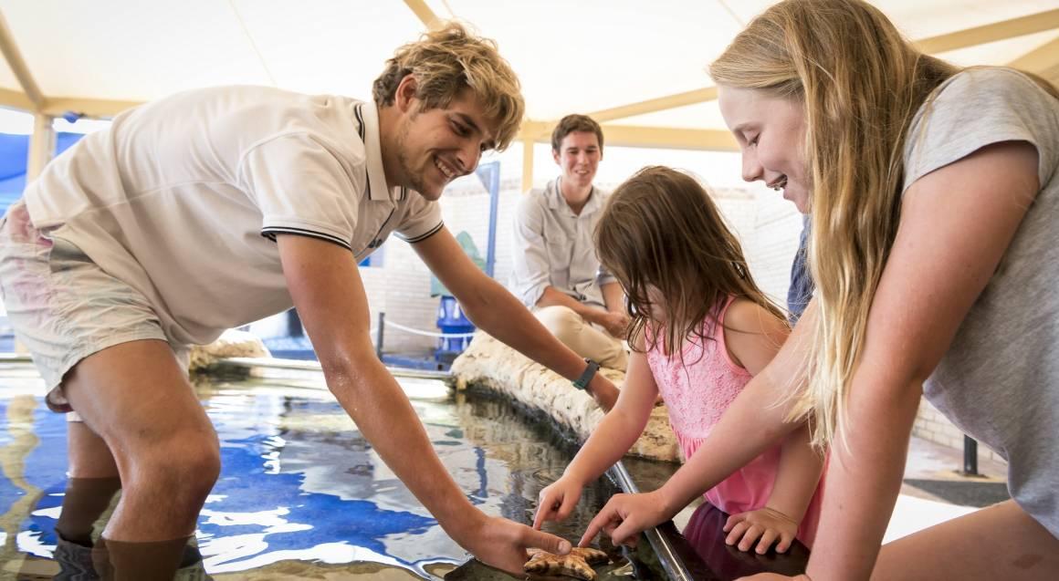 Glass Bottom Boat Tour at The Aquarium of Western Australia