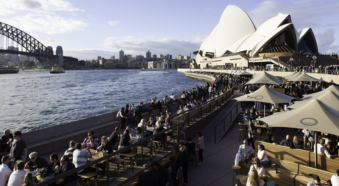 Sydney Harbour Bridge Climb with Opera Bar Fish and Chips