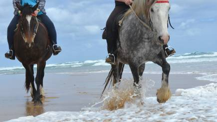 RedBalloon Horse Riding on the Beach - For 2