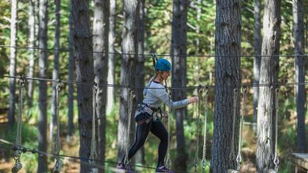 RedBalloon High Ropes Adventure - Tree Hugging