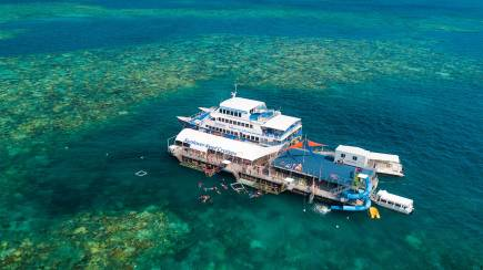 RedBalloon Great Barrier Reef Cruise with Lunch and Snorkelling- Family