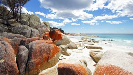 RedBalloon Bay of Fires Walk with Meals and Support Team 3 Days - Adult